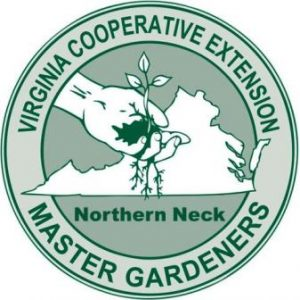 NNMG EMG Logo1