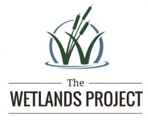 The_Wetlands_Project